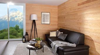 Lambris bois clairs salon moderne   Sonnier, Menuiserie, Panneaux, Bois   Isère (38), Drôme (26), Ardèche (07)